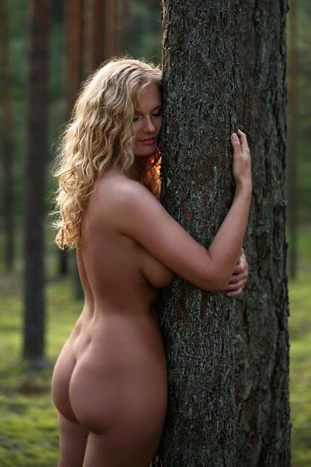 Rencontre un homme riche solide comme un chêne